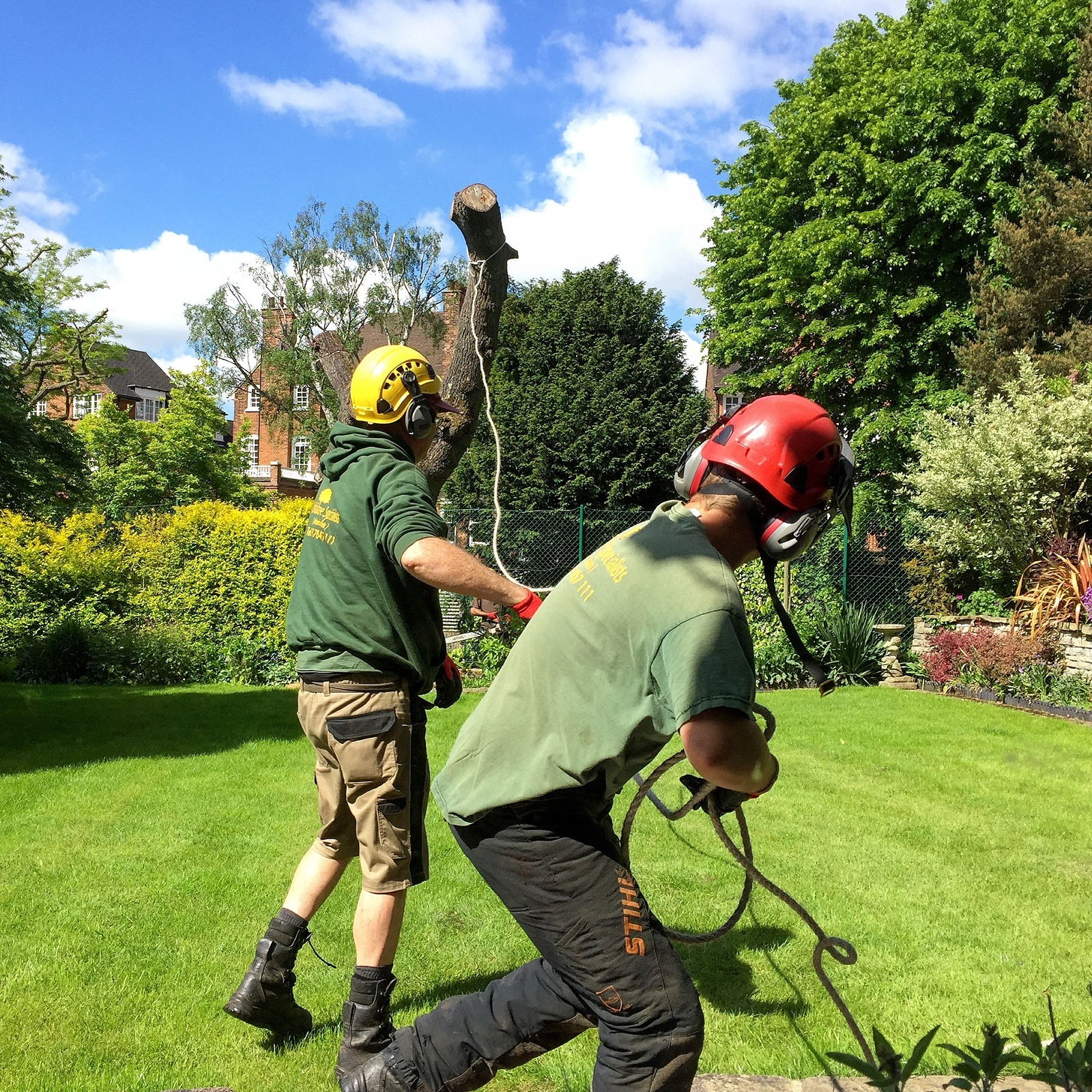 Tree Removal Affordable