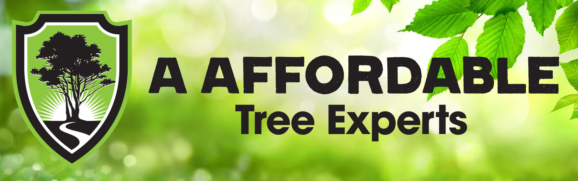 A Affordable Tree Experts About
