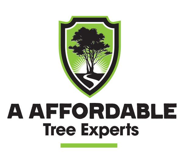 a affordable logo